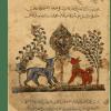 5.ARABE-3465—-Folio-48r